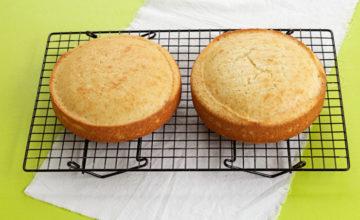 Freeze Sponge Cake